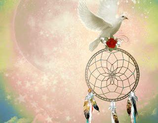 A Savoir : la notion de libre arbitre en voyance